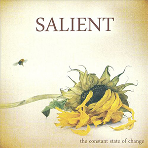 The Constant State of Change by Salient