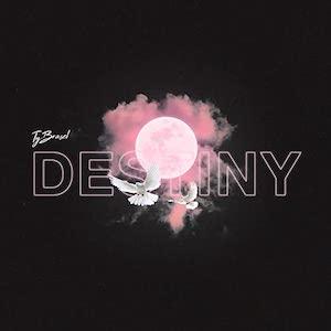 Ty Brasel Destiny